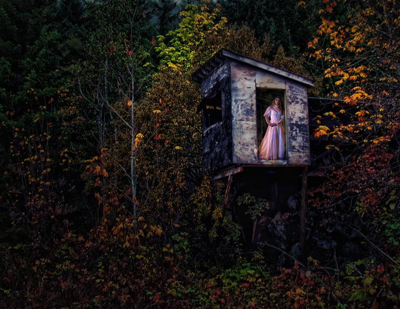 http://www.nwprophoto.com/tempint/rissawoods.jpg